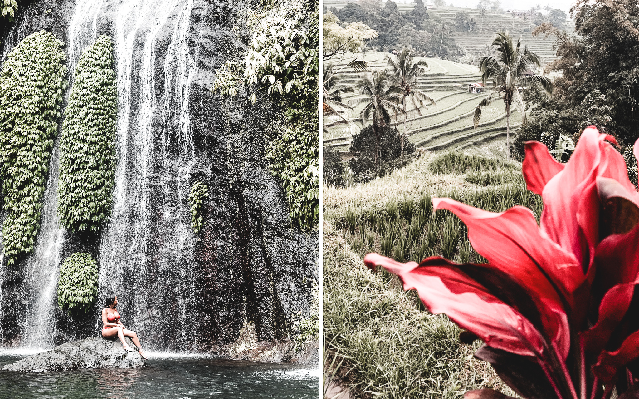 Bali, Indonesia, temple,Forest, waterfall, travel storyteller, travel writer, travel blog, trip in Bali, Gilis Island, Gili Trawanga, recap 2019 to fordward 2020.